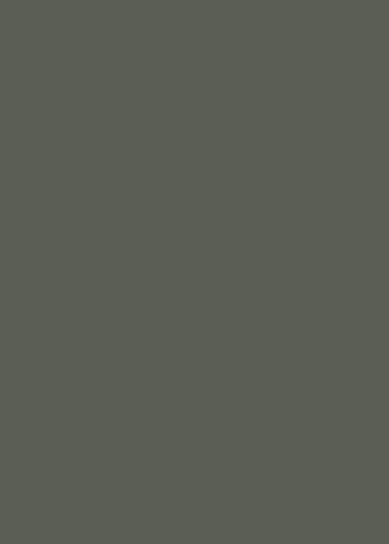 pompeian ash 293